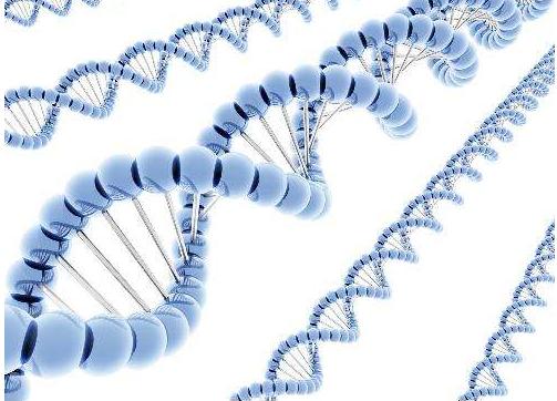 生物技术及应用专业--成人高考长春师范大学