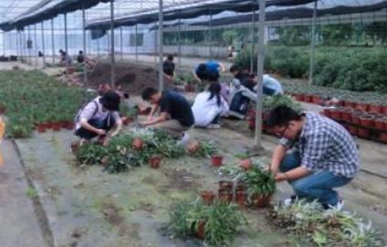 园艺技术专业--湖南生物机电职业技术学院函授专升本