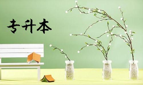 武汉理工大学继续教育学院专升本如何报名